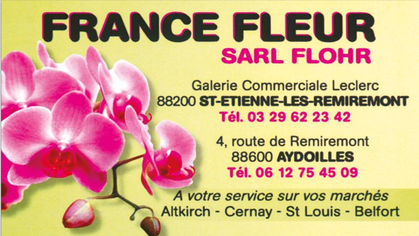 France fleur